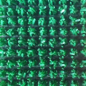 Spring Green 11